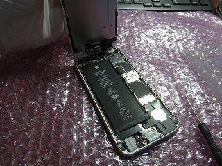 iPhone6.DSC06223.jpg